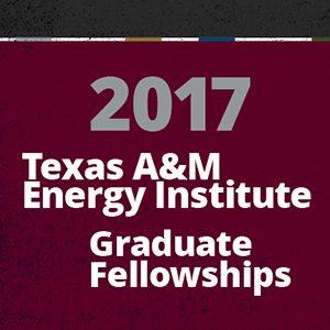 2017-18 Energy Institute Fellows