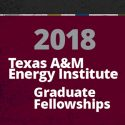 2018-19 Energy Institute Fellows