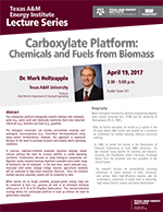 Energy Institute Lecture Series: Dr. Mark Holtzapple